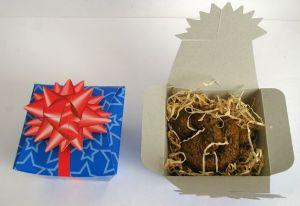 Hovínko v dárkové krabičce (15B/C)