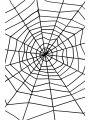 Pavoučí síť  (11-G)