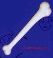 Kost bílá   38 cm ( 61)