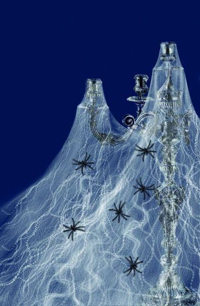 Pavučina + 6 pavoučků (11-H,124) Smiffys.com